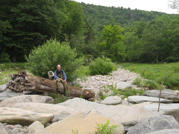 Naturalist in the Catskills