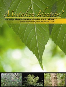 mistaken-id-front-cover